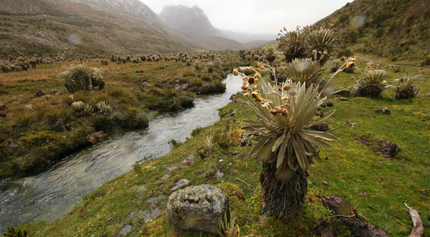 CON COAUTORIA DE SENADOR  GARCIA ZUCCARDI, PASÓ PRIMER DEBATE PROYECTO DE CAMBIO CLIMATICO