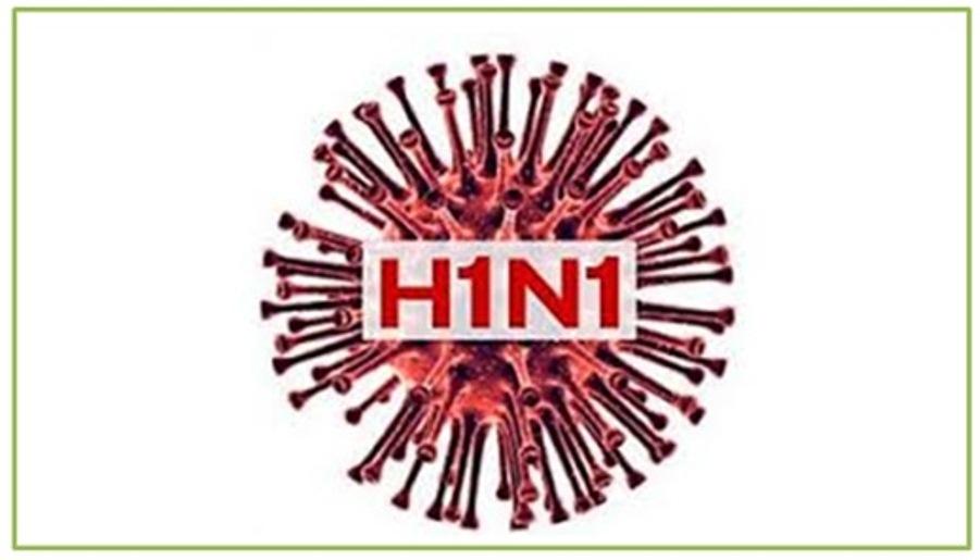 NUEVA AMENAZA DEL AH1N1 CON LA LLEGADA DE LLUVIAS
