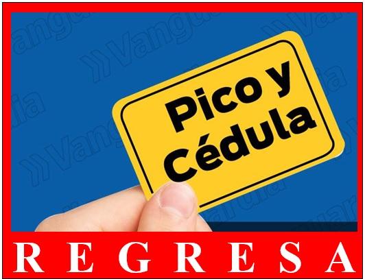 REGRESA PICO Y CEDULA CON OTRAS RESTRICCIONES DE BIOSEGURIDAD